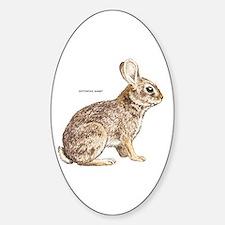 Cottontail Rabbit Sticker (Oval)