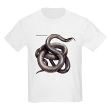 Northern Black Racer Snake T-Shirt