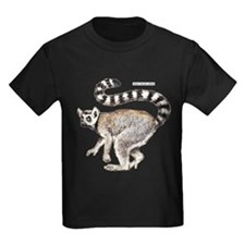 Ring-Tailed Lemur T