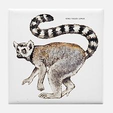 Ring-Tailed Lemur Tile Coaster