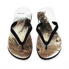 Wolverine Animal Flip Flops