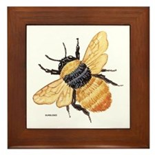 Bumblebee Insect Framed Tile