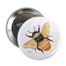"""Bumblebee Insect 2.25"""" Button (10 pack)"""