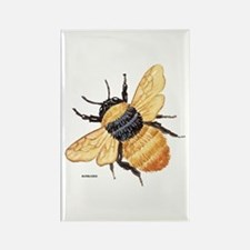 Bumblebee Insect Rectangle Magnet