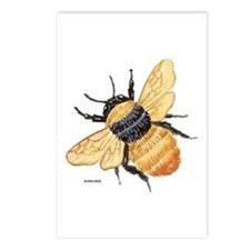 Bumblebee Insect Postcards (Package of 8)