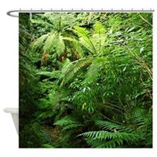 Tree Ferns New Zealand Forest Shower Curtain