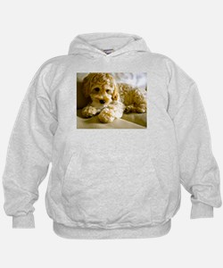 The Cockapoo Puppy Hoodie