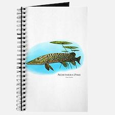 Northern Pike Journal