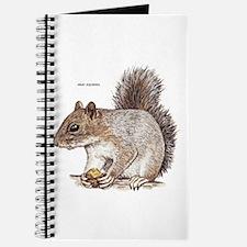 Gray Squirrel Animal Journal