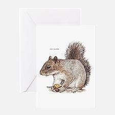 Gray Squirrel Animal Greeting Card