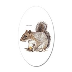 Gray Squirrel Animal Wall Decal