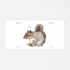 Gray Squirrel Animal Aluminum License Plate