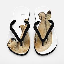 Cougar Cat Animal Flip Flops