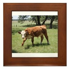 Hereford Calf at the LBJ Ranch Framed Tile