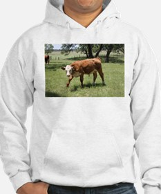 Hereford Calf at the LBJ Ranch Hoodie