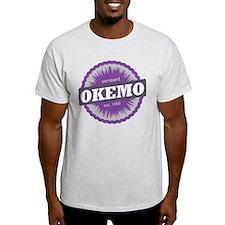 Ski Resort Vermont Purple T-Shirt