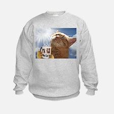 Candy Sweatshirt