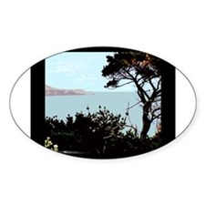 PCH Oval Decal