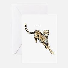 Cheetah Wild Cat Greeting Cards (Pk of 20)