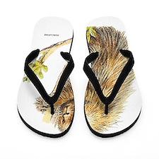 Porcupine Animal Flip Flops