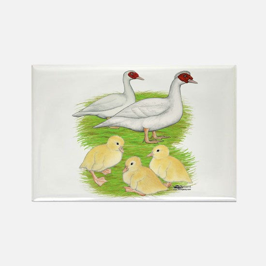 Duck White Muscovy Family Magnets