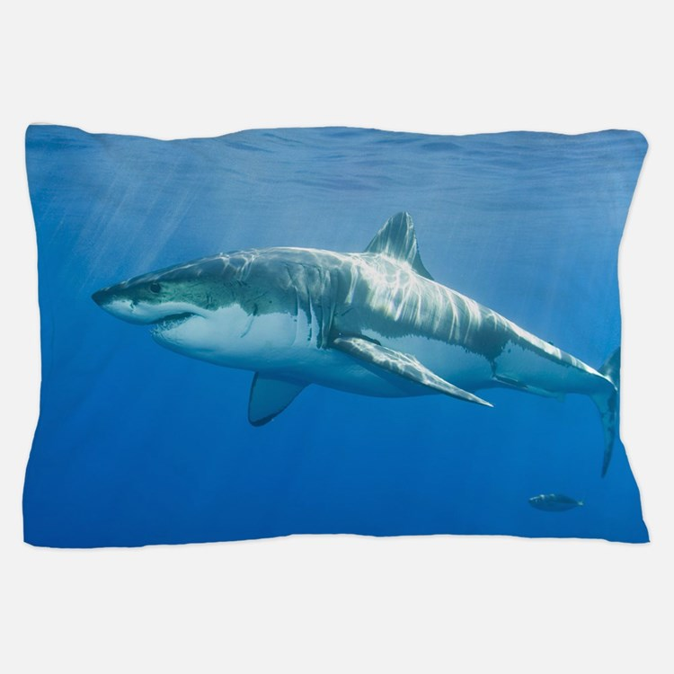 Shark Pillow That Eats You great white shark gifts & merchandise | great white shark gift