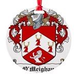 OMeighan-Irish-9.jpg Round Ornament