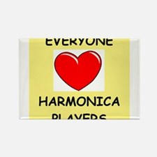 harmonica Rectangle Magnet