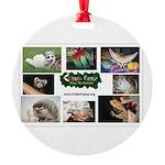 Critter Camp! Ornament