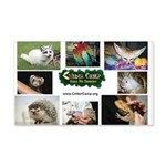 Critter Camp! Wall Decal