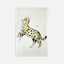 Serval African Wild Cat Rectangle Magnet