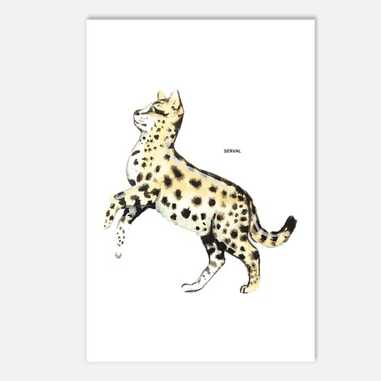 Serval African Wild Cat Postcards (Package of 8)