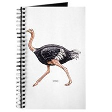 Ostrich Bird Animal Journal