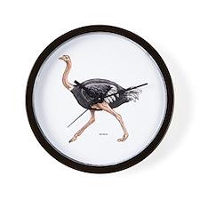 Ostrich Bird Animal Wall Clock