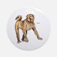 Macaque Monkey Ape Ornament (Round)