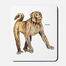 Macaque Monkey Ape Mousepad