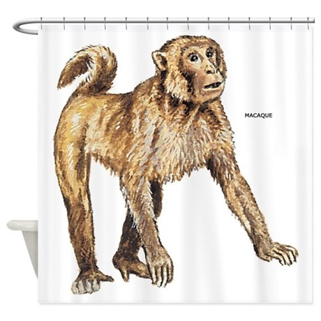 Macaque Monkey Ape Shower Curtain By Animalartwork