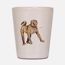 Macaque Monkey Ape Shot Glass