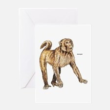 Macaque Monkey Ape Greeting Card