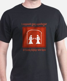 support gay marriages if both chicks hot T-Shirt