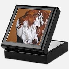 overo stallion Keepsake Box