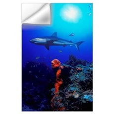 Caribbean Reef Shark Wall Decal