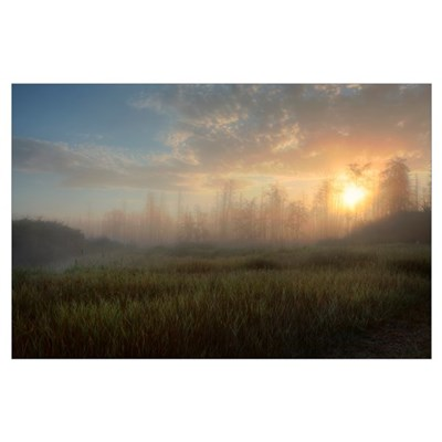 A Summer Sunrise On The Edge Of A Forest Fire Burn Poster