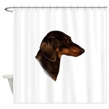 Miniature Dachshund Shower Curtain