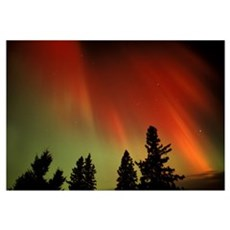 Northern Lights, Birds Hill Provincial Park, Manit Framed Print