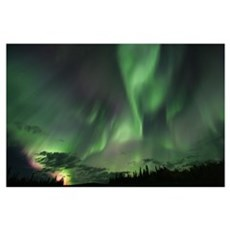 Northern Lights, Yukon Poster
