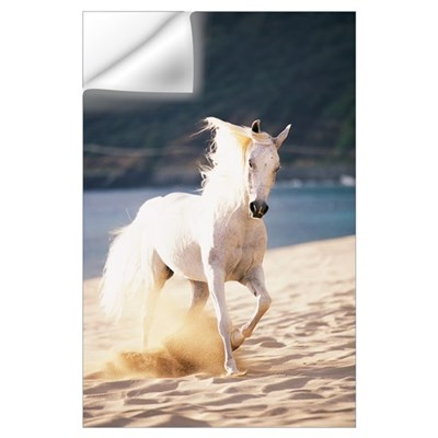 White Horse Running On The Beach Wall Decal