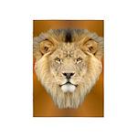 Lion Face 5'x7'Area Rug