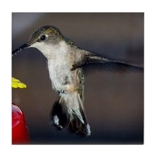 Hummingbird in Flight Tile Coaster