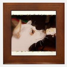 BEST BUDDIES Framed Tile